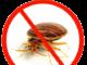 control bugs