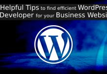 WordPress Developer for Business Website